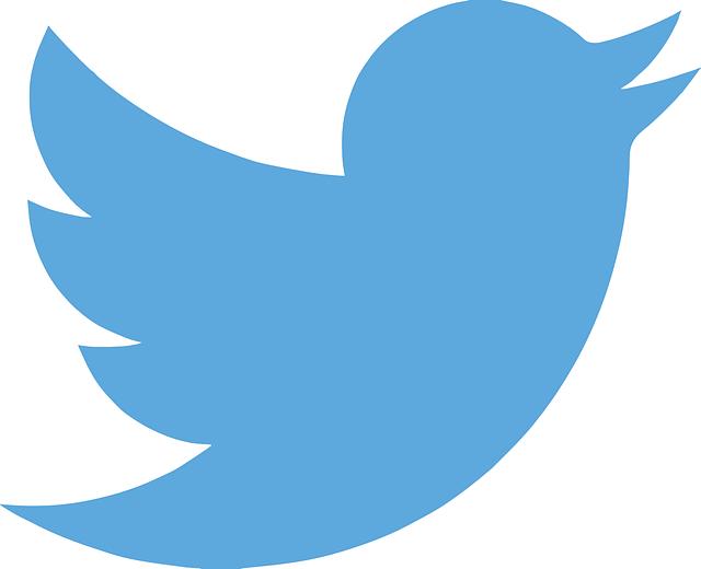 ロケットモバイル神プランではTwitterの画像の表示が遅い