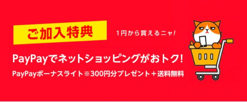 ⑫ご加入特典(PayPayでネットショッピングがおトク!)